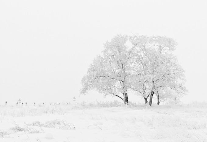 winter-20234_1280
